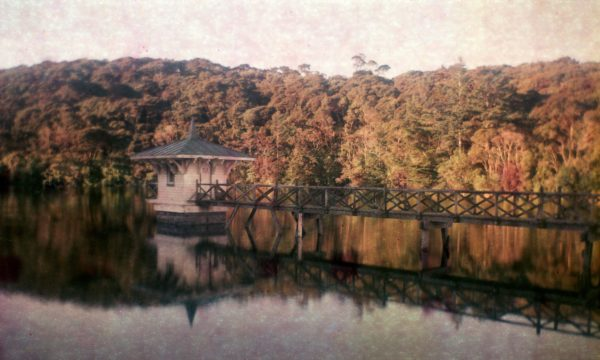 New-Zealand-Dunedin-long-exposure-photography-film-landscape