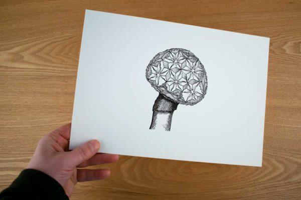 oene-van-geel-illustration-00004