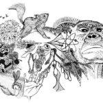 oene-van-geel-illustration-00010